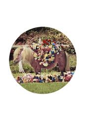 Seletti(セレッティ) Plates -Horse-