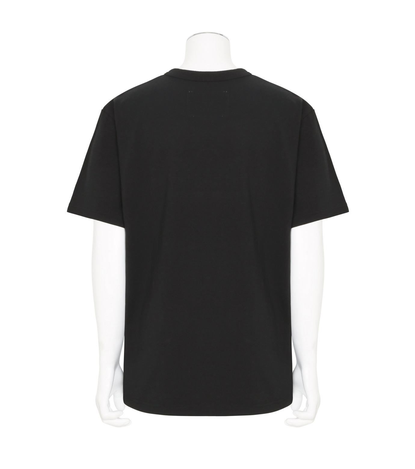 Sacai(サカイ)のOddy Knocky T-BLACK(カットソー/cut and sewn)-17-01260M-13 拡大詳細画像2