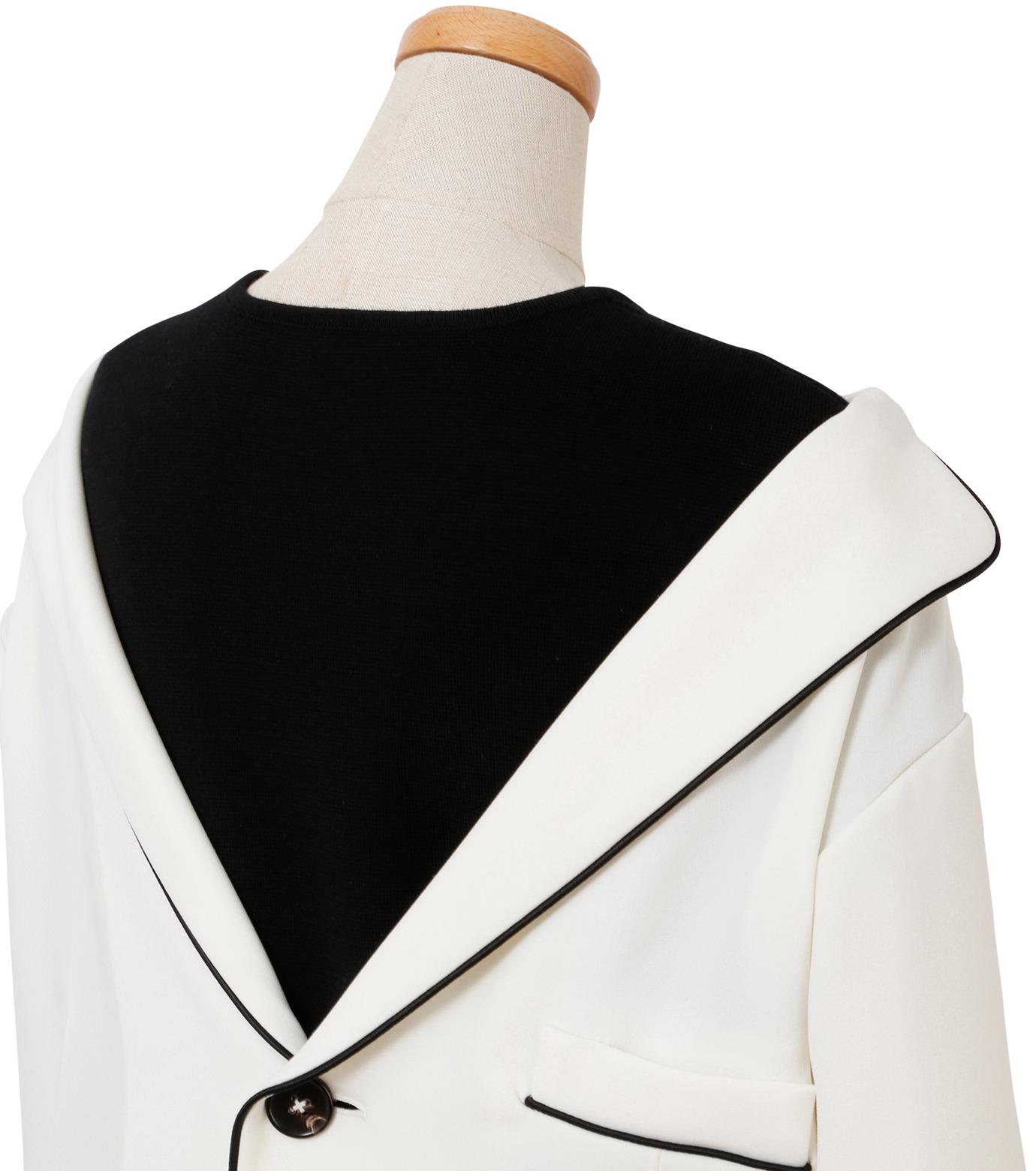 IRENE(アイレネ)のリバーサルスーツトップス-WHITE(シャツ/shirt)-18A83006 拡大詳細画像4