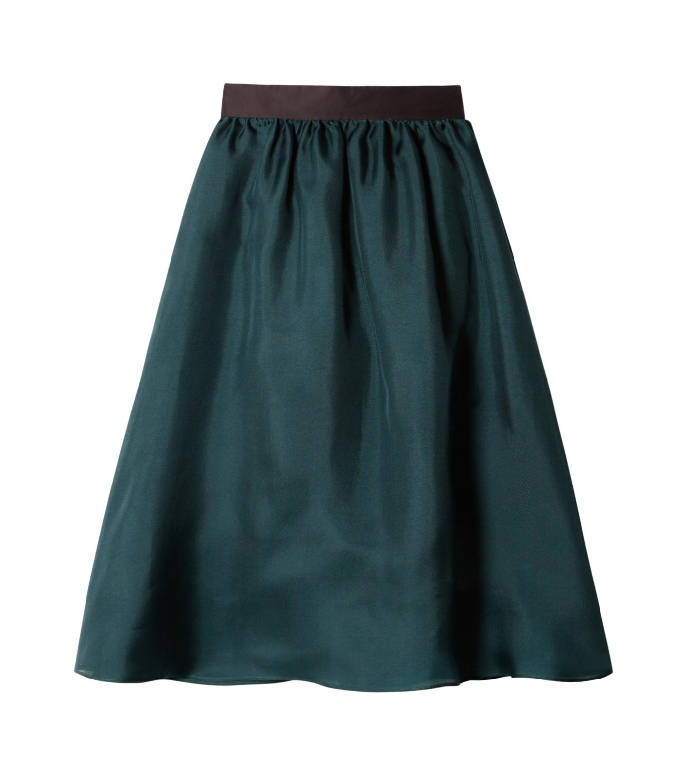 LE CIEL BLEU(ルシェルブルー)のオーガンジーボリュームスカート-GREEN(スカート/skirt)-19S67101 拡大詳細画像1