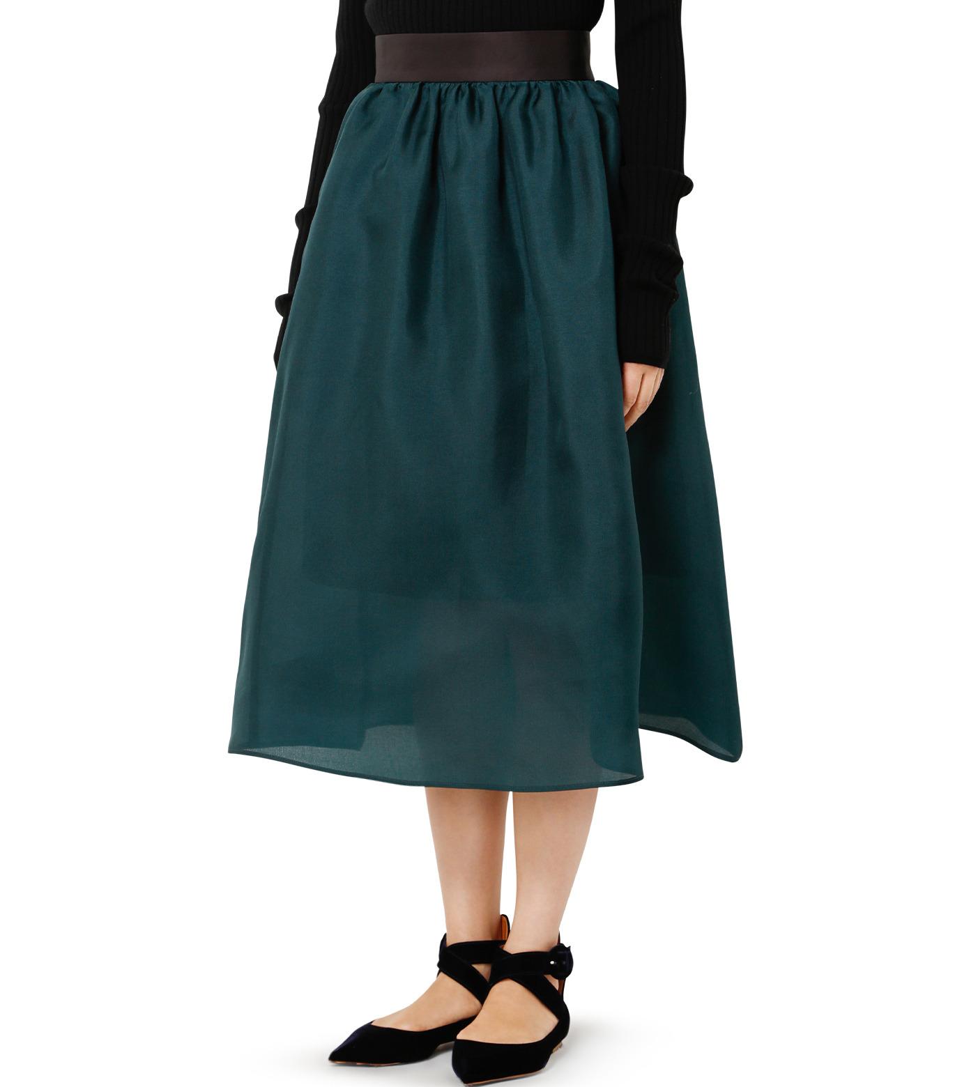 LE CIEL BLEU(ルシェルブルー)のオーガンジーボリュームスカート-GREEN(スカート/skirt)-19S67101 拡大詳細画像3