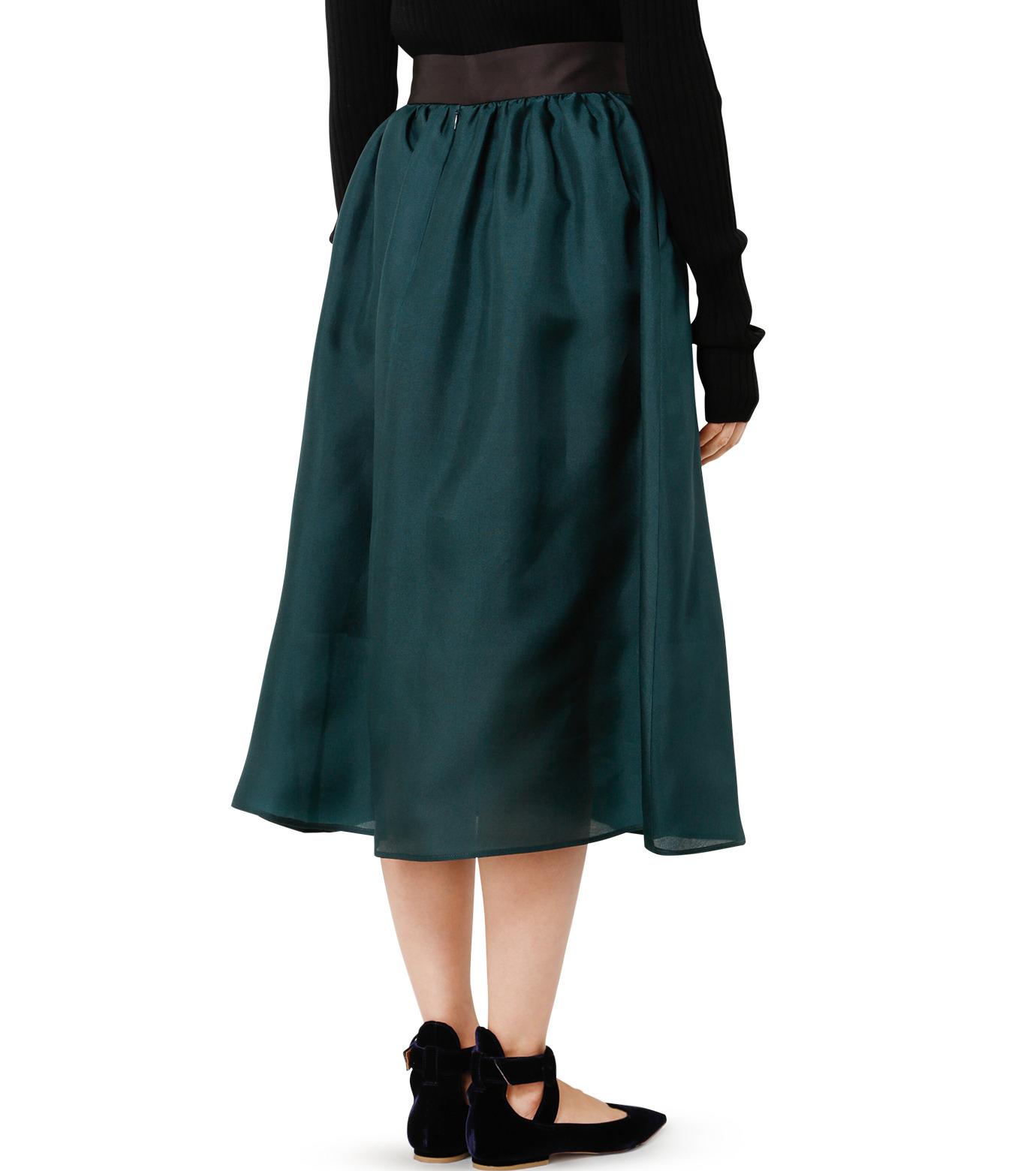 LE CIEL BLEU(ルシェルブルー)のオーガンジーボリュームスカート-GREEN(スカート/skirt)-19S67101 拡大詳細画像4