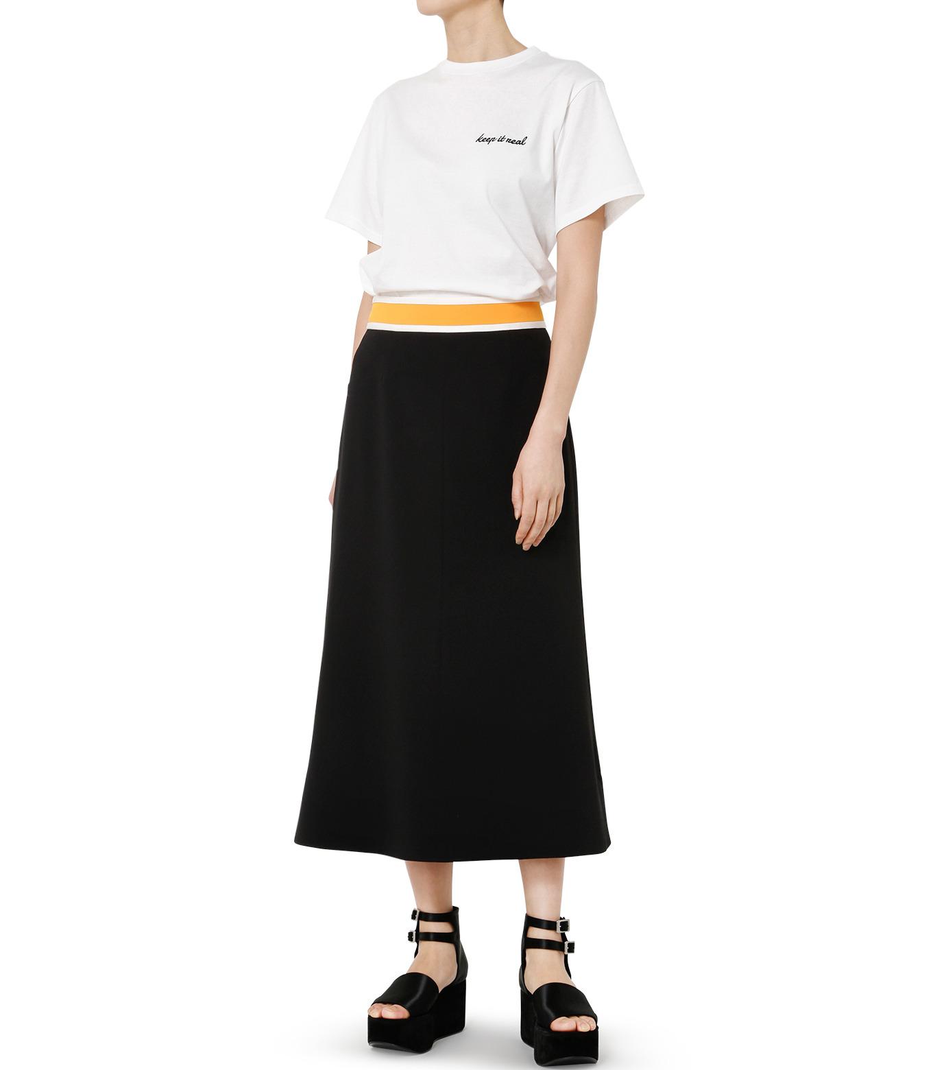 LE CIEL BLEU(ルシェルブルー)のスイッチベルトフレアラインスカート-BLACK(スカート/skirt)-19S67102 拡大詳細画像2