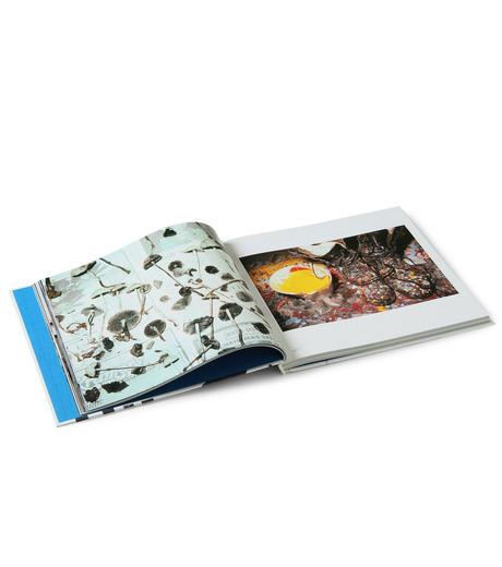 Bueno!Books(ブエノ! ブックス)の75-85 surfing ja-NONE-75-85-Surfin-0 詳細画像3
