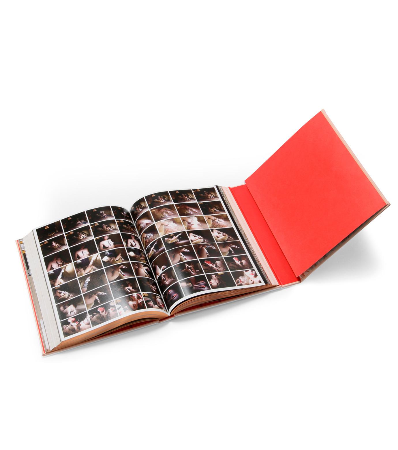 ArtBook(アートブック)のChristian Louboutin-SALMON PINK(インテリア/OTHER-GOODS/interior/OTHER-GOODS)-8478-3651-7-73 拡大詳細画像4