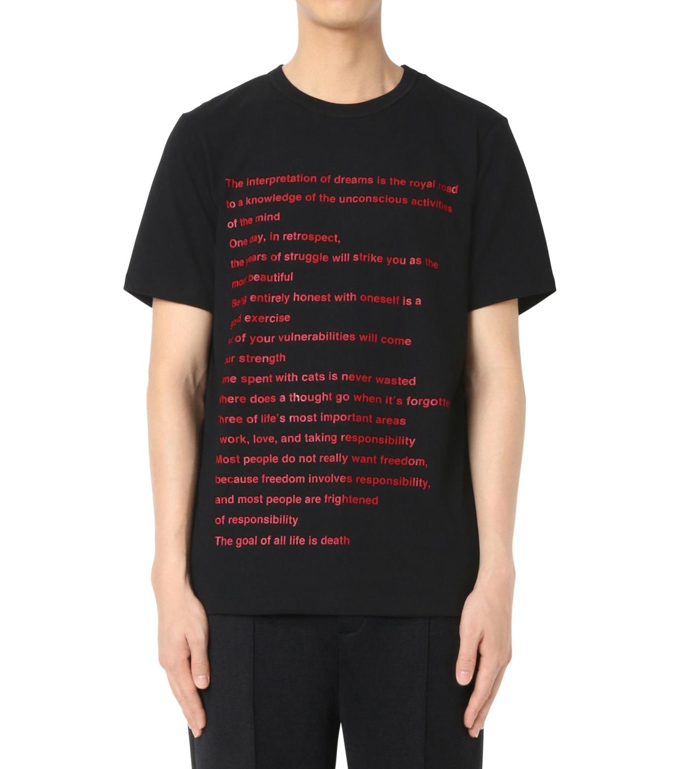 DRESSEDUNDRESSED(ドレスドアンドレスド)のPrinted T-BLACK(カットソー/cut and sewn)-DUW16182-13 拡大詳細画像1