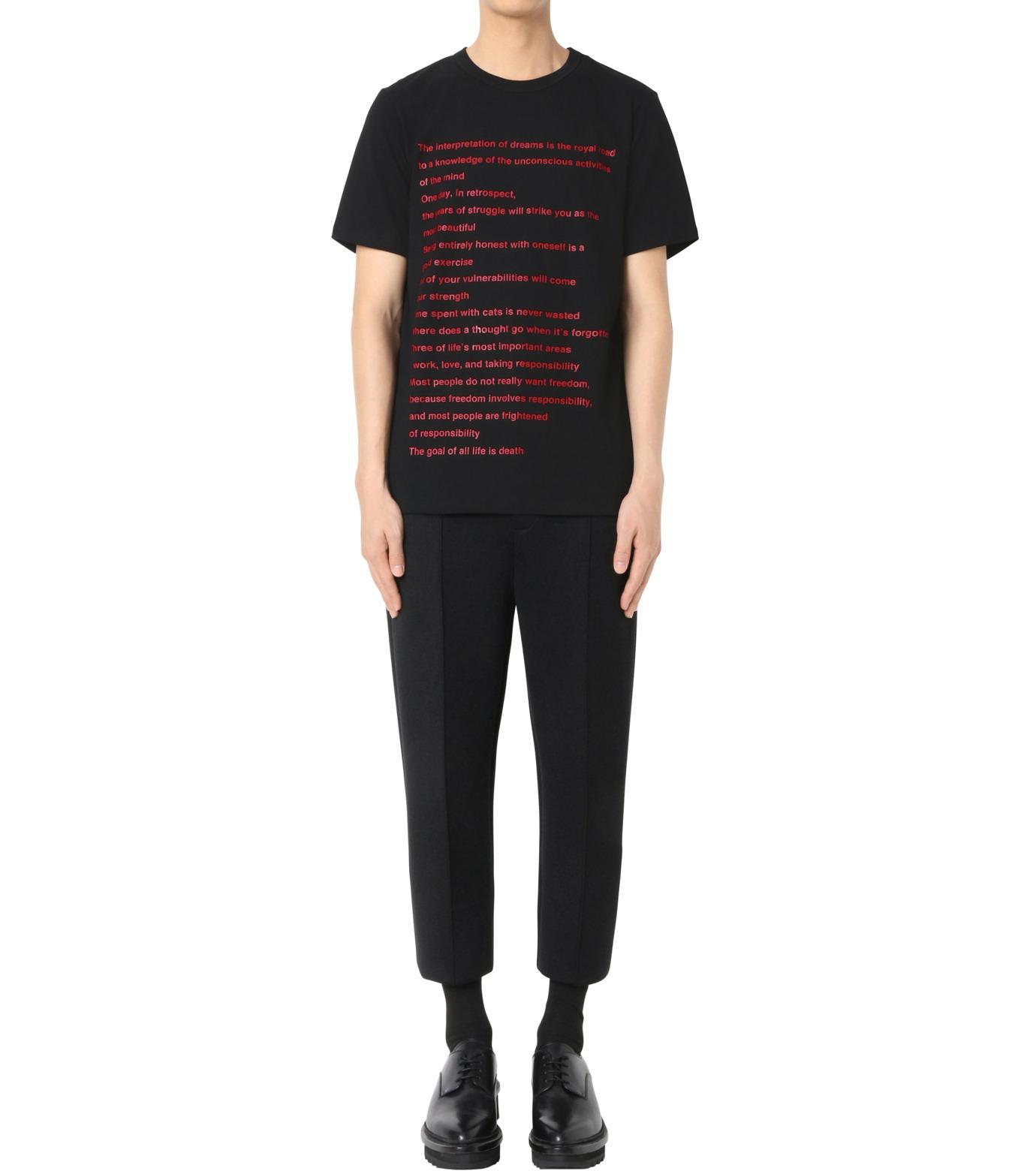 DRESSEDUNDRESSED(ドレスドアンドレスド)のPrinted T-BLACK(カットソー/cut and sewn)-DUW16182-13 拡大詳細画像3