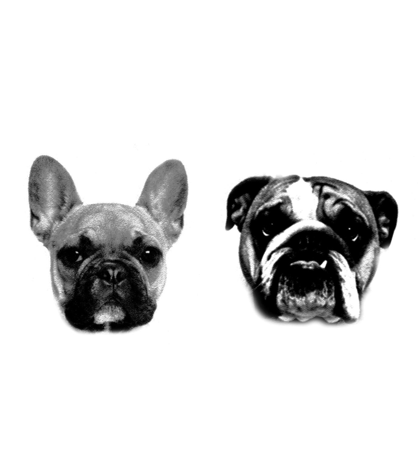 DCER(ディーシーイーアール)のBulldogs Tattoo-BLACK(MAKE-UP/MAKE-UP)-FW15004-13 拡大詳細画像1