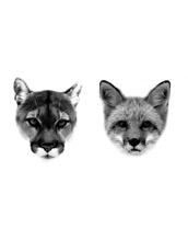 DCER Puma + Fox Tattoo