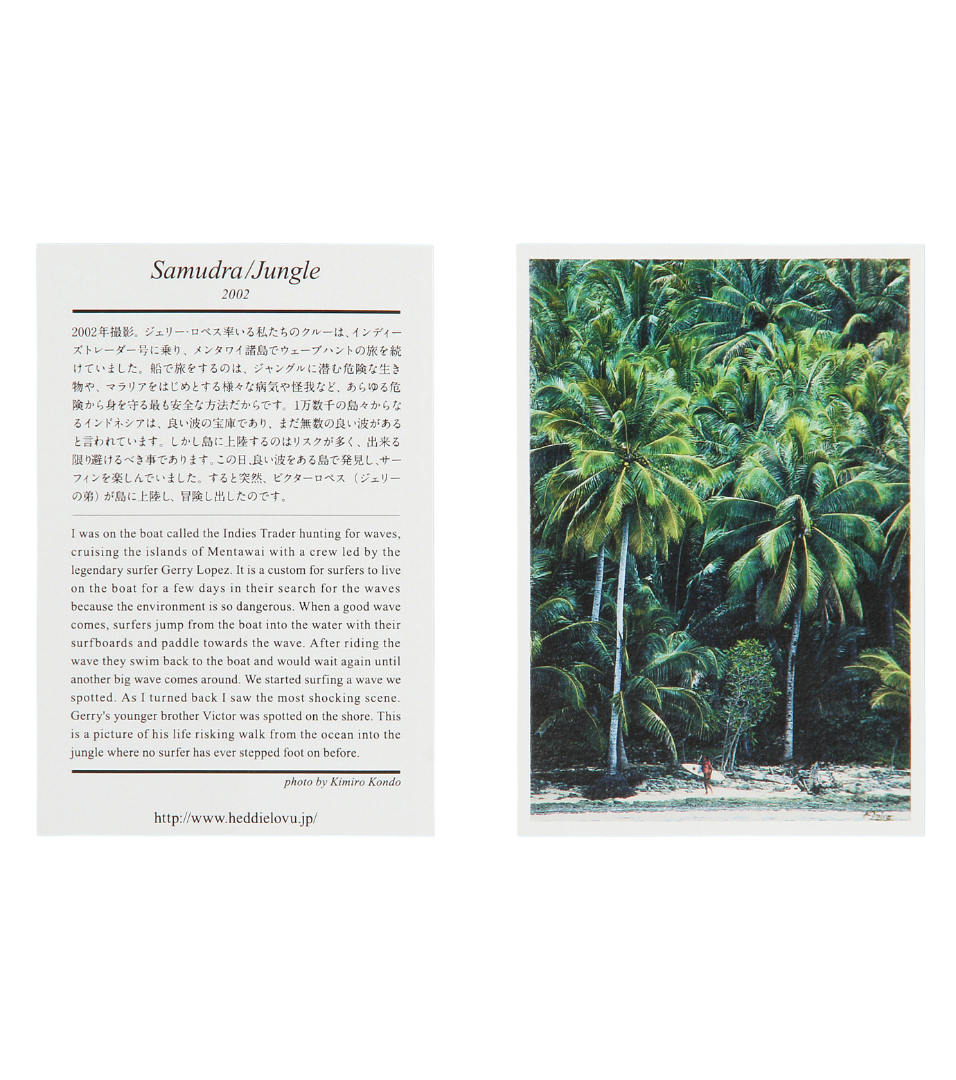 Heddie Lovu(エディー ルーヴ)のOrganic jungle-LIGHT BLUE(カットソー/cut and sewn)-OT-M1-01-14A-91 拡大詳細画像2
