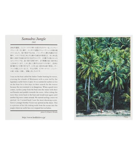 Heddie Lovu(エディー ルーヴ)のOrganic jungle-LIGHT BLUE(カットソー/cut and sewn)-OT-M1-01-14A-91 詳細画像2