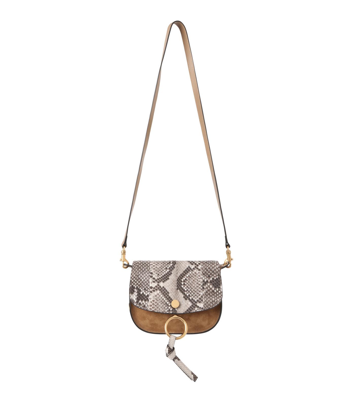 Chloe(クロエ)のKurtis Python Shoulder Bag-BEIGE(ショルダーバッグ/shoulder bag)-S239H8VB-52 拡大詳細画像1