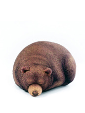 Chic Sin Design() Sleeping Small Bear